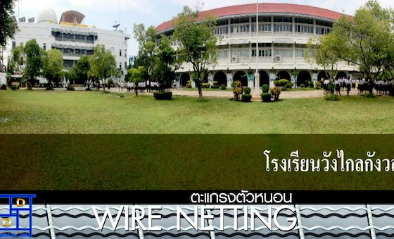 Wire Netting School