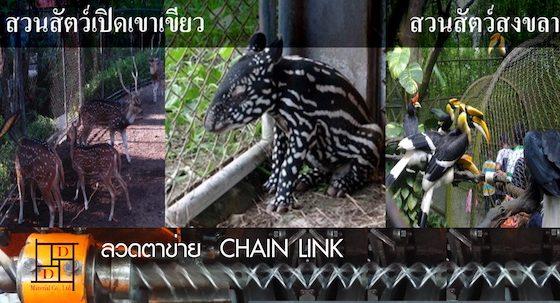 Chain Link Zoo